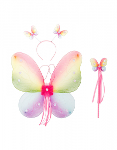 Claire's Club Butterfly Set 23176