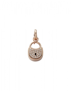Fossil Charms JF00082791