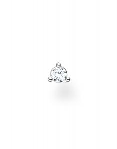 Thomas Sabo Charming Earrings H2197-051-14