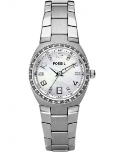 Fossil Ladies Other AM4141