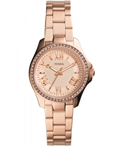 Fossil Cecile Small AM4578