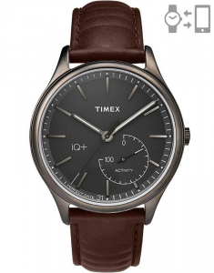 Timex® IQ+ Move TW2P94800