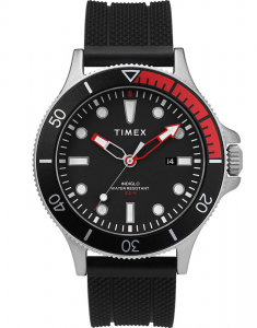 Timex® Expedition® Allied Coastline TW2T30000
