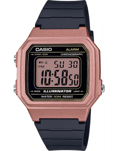 Casio Collection W-217HM-5AVEF